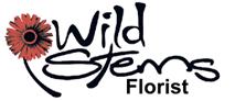 wildstemsfloristlogo